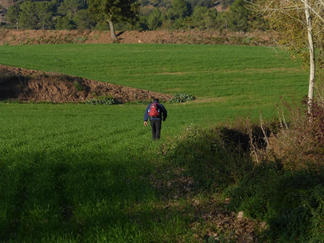 Caminar-de-Manresa-a-Vic-Ton-Granero-i-Jordi-Lafon-24