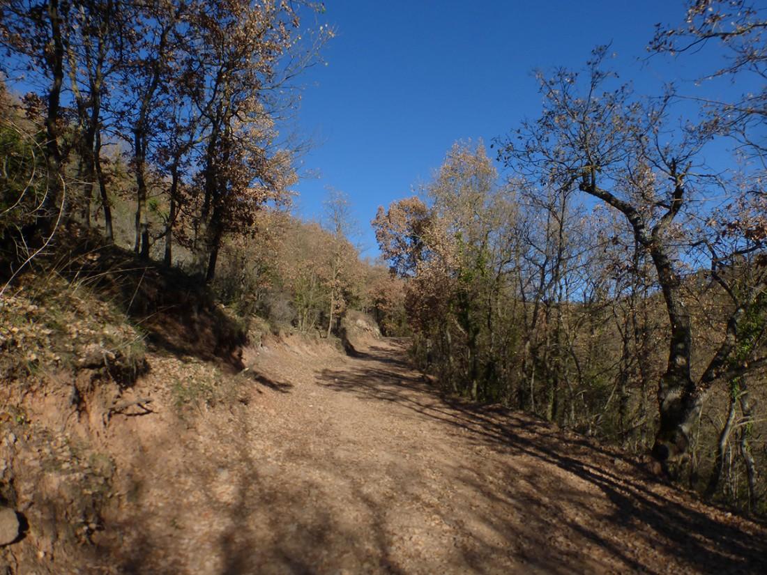 Caminar-de-Manresa-a-Vic-Ton-Granero-i-Jordi-Lafon-30