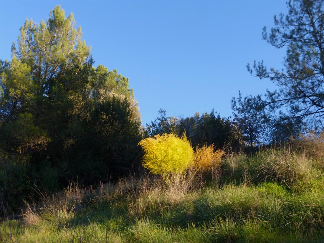 Caminar-de-Manresa-a-Vic-Ton-Granero-i-Jordi-Lafon-38