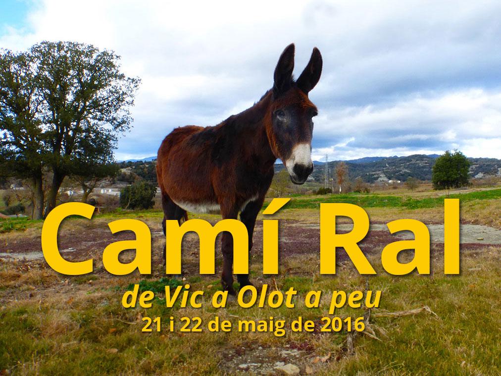 Camí-RALde-Vic-a-Olot-a-peu-Deriva-Mussol